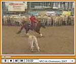 Galloping Video